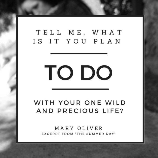 mary oliver quote.png